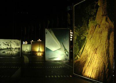 Exposition Chine Tour Eiffel Lubliner 34